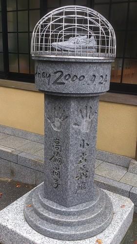 DSC_7977.jpg